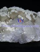 白钨精矿-0095