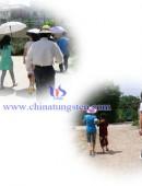 2012年中钨在线摘西瓜活动-0002