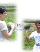 2012年中钨在线摘西瓜活动-0008
