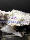 黑鎢精礦-0127