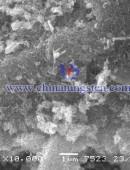 鎢酸1仟倍電子掃描電鏡照片